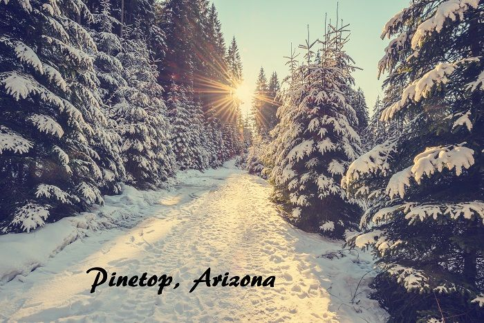 Pinetop Arizona
